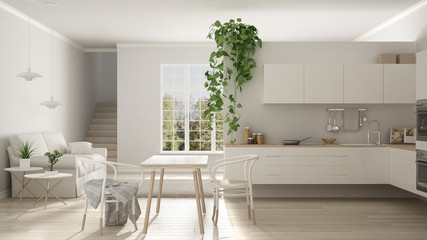 Scandinavian white minimalist living with kitchen, open space, one room apartment, modern interior design