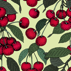 vector cherry seamless pattern. background, pattern, fabric design, wrapping paper, cover. Vintage hand drawn illustration