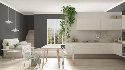 Scandinavian white minimalist living with kitchen, open space, one room apartment, modern interior design