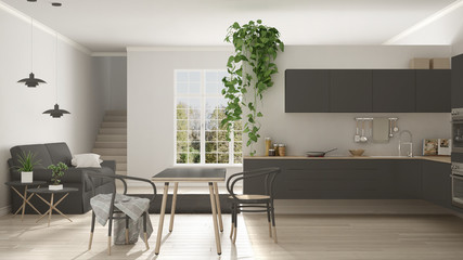 Scandinavian gray minimalist living with kitchen, open space, one room apartment, modern interior design
