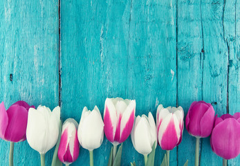 Frame of tulips on turquoise rustic wooden background. Spring flowers. Greeting card for Valentine's Day, Woman's Day and Mother's Day. Top view
