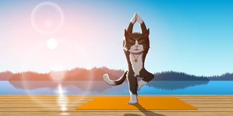 cat practice yoga