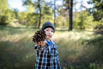 Portrait of boy showing pine cone while standing on field