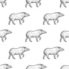 Seamless pattern with Tapir.