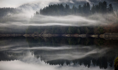 Scenic view of fog over lake against trees