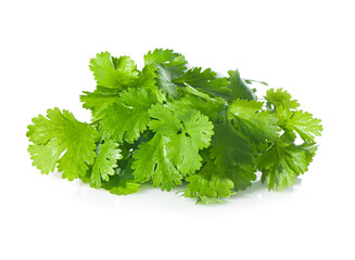Fresh coriander leaves on a white background.