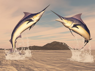 Marlin fishes danse - 3D render