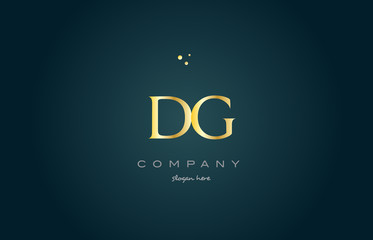 dg d g  gold golden luxury alphabet letter logo icon template