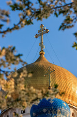dome of orthodox church in springtime  blossom of apple tree flowers before easter