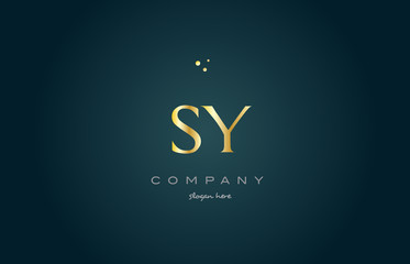 sy s y  gold golden luxury alphabet letter logo icon template
