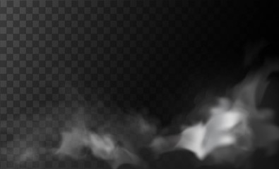 White smoke or fog clouds isolated on transparent background.  Vector illustration