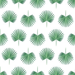 Seamless background of palm leaves