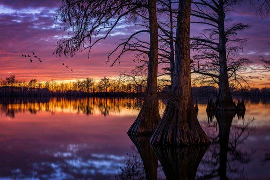 sunset over horseshoe lake, southern illinois