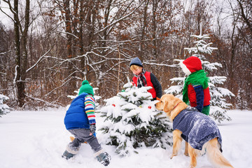 Three children decorating a Christmas tree in the garden with their golden retriever dog