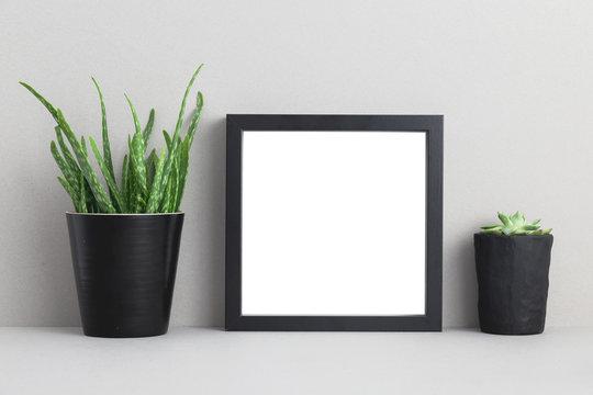 Photo frame with houseplant on a shelf. Mock up.