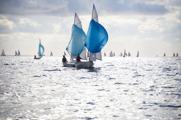 Deurstickers Zeilen sailing Regatta on sea