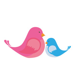 cute birds couple icon vector illustration design