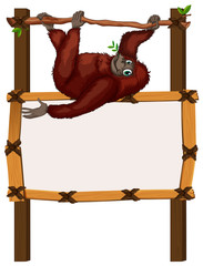 Border template with monkey on branch