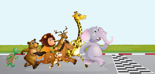 Wild animals running on the road