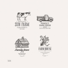 Vintage farm food logo collection. Engraved logo set. Vector illustration
