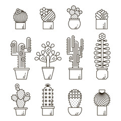 Cactus and succulents vector line icon set. Exotic floral garden silhouettes. Nature cacti outline design illustration. Graphic cartoon plant collection isolated.