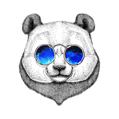 Hipster Panda Cute bamboo bear Image for tattoo, logo, emblem, badge design