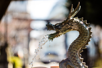 A (Water) Dragon Ornament in a Japanese Shinto Shrine. This one is spitting out some water to perform the ritual washing of hands before entering.