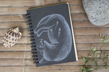 Pregnant cat sleeps hand-drawn illustration. Cat by white chalk on black paper.