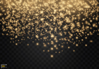 Shining star, the sun particles and sparks with a highlight effect, golden bokeh lights glitter and sequins. On a dark background transparent. Vector, EPS10