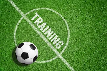 Training / Fußball / Rasen