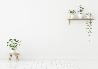 White wall mock up with green plants on shelf and stool. 3d rendering.