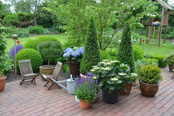 Terrasse mit Buchsbaum- Kegeln und Hortensien