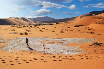 Wall Mural - People walking between a big dunes in the Namib Desert, in Sossusvlei, in the Namib-Naukluft National Park of Namibia