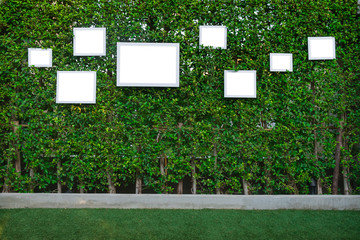 white picture frame on tree background for party