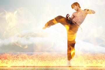 Garden Poster Martial arts Composite image of martial arts fighter over fire flames