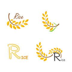 Set of logos rice.