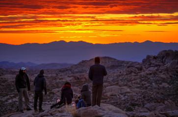 Dawn in the desert of Joshua Tree California