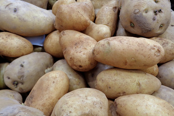 Heap of uncooked light brown potatoes