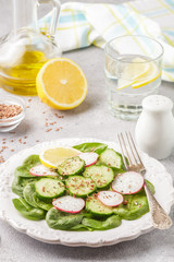 Dietary organic spring salad with spinach, radish, cucumber and flax seed. A vegetarian dish