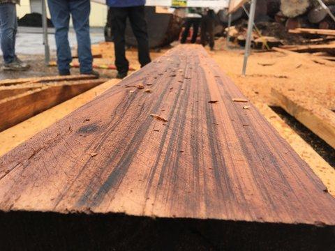 Fresh Cut wood