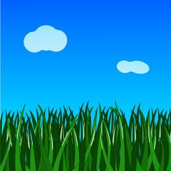 green grass on gradient blue background