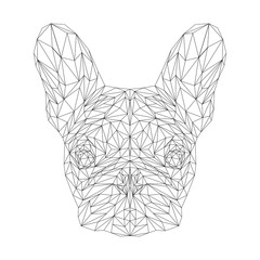 French bulldog dog animal low poly design. Triangle vector illustration.
