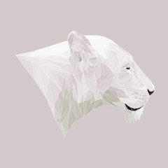 Lioness cat animal low poly design. Triangle vector illustration.