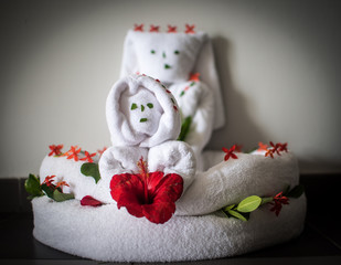 Towel Characters with Flowers in Dominican Republic