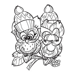 Pretty Owl on tree branch