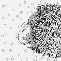 Cute Winter Bear