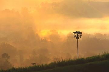 Moring sunrise at Khao-Kho district Petchabun Province Thailand