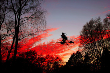 Halloween. The witch flying on the broom with the burning red eyes against the background of the night sky.
