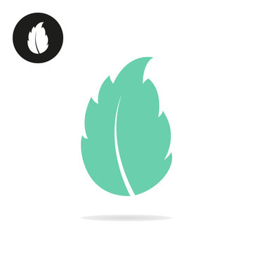 Mint leaf vector icon