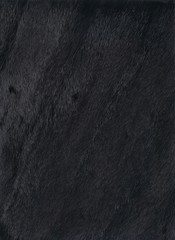 Mink fur texture